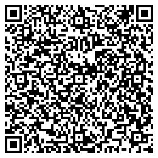 QR-код с контактной информацией организации № 2 ДШИ