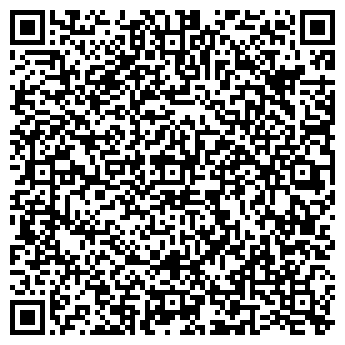 QR-код с контактной информацией организации ВИРТУАЛЬНЫЙ ВЛАДИМИР
