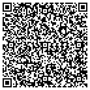 QR-код с контактной информацией организации ДВОРЕЦ ИСКУССТВ