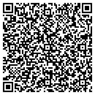 QR-код с контактной информацией организации ВЛАДИС, ООО