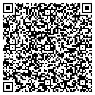QR-код с контактной информацией организации ДВОРИКИ ЗАО