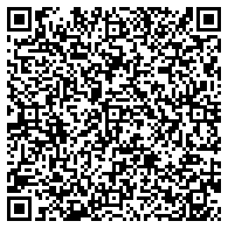 QR-код с контактной информацией организации КИНГ СООО