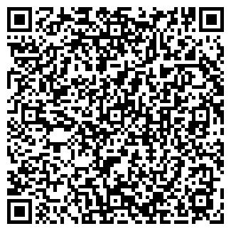 QR-код с контактной информацией организации БОРОДИНСКОЕ, ТОО