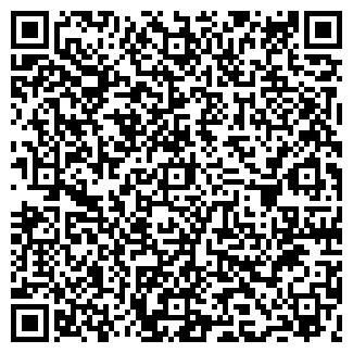 QR-код с контактной информацией организации ВИЛИС, ООО