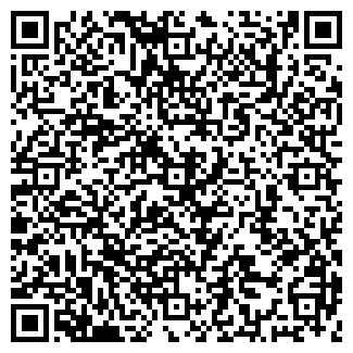 QR-код с контактной информацией организации ЧП ПЫШНЫХ Н. Т.