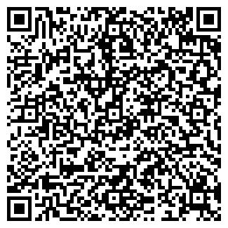 QR-код с контактной информацией организации ООО ЗВЕЗДНЫЙ