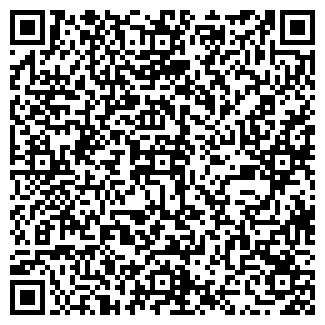 QR-код с контактной информацией организации ДЭНСИ ПЛЮС