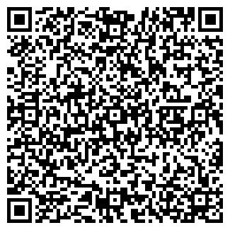 QR-код с контактной информацией организации Н. В. С., ООО