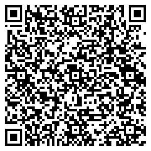 QR-код с контактной информацией организации ТОО БОР