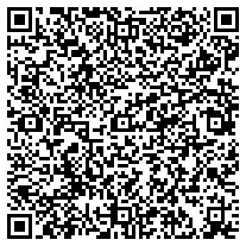 QR-код с контактной информацией организации ДЕТСКАЯ ШКОЛА ИСКУССТВ №1