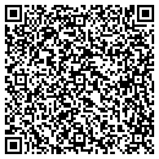 QR-код с контактной информацией организации ХИМЧИСТКА БЛЕСК