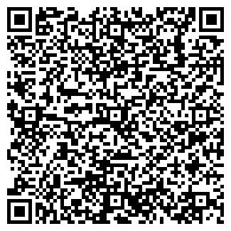 QR-код с контактной информацией организации NIRGOS HOLDING