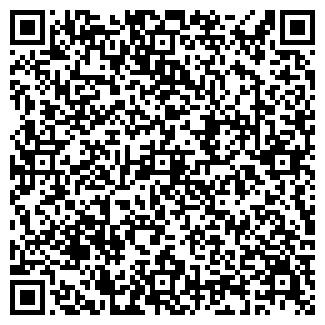 QR-код с контактной информацией организации ПАЛАНТИР, ООО