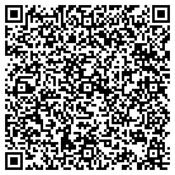 QR-код с контактной информацией организации ЧАСТНАЯ ИНДИВИДУАЛЬНАЯ ГАЛЕРЕЯ РАДИНА О. М.