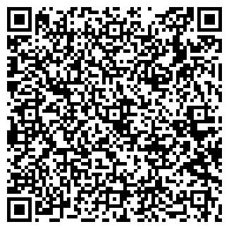 QR-код с контактной информацией организации В.В. МОТИН, ИП