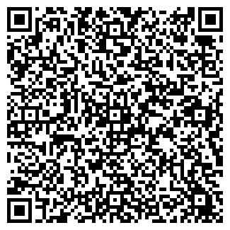 QR-код с контактной информацией организации ЧАПЛЫГИН, ЧП