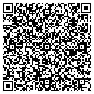 QR-код с контактной информацией организации ЭЛЬФ-91