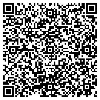 QR-код с контактной информацией организации ВЭБ-ЛИЗИНГ
