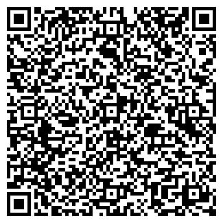 QR-код с контактной информацией организации № 1, ООО