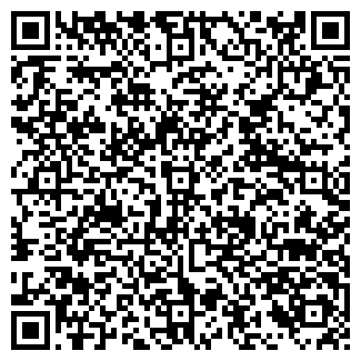 QR-код с контактной информацией организации ИП ЧИСТЯКОВ А.Л.