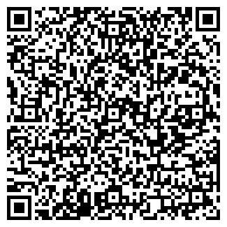 QR-код с контактной информацией организации БЕЛВИЛЛЕСДЕН ИП