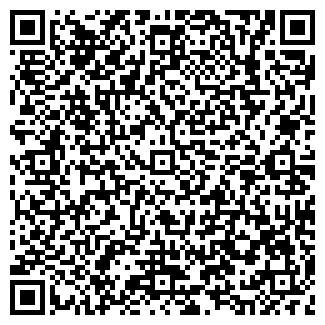 QR-код с контактной информацией организации ВОЛЬГИНСКИЙ