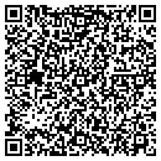 QR-код с контактной информацией организации ИП АЛЕКСЕЕВ М.В.