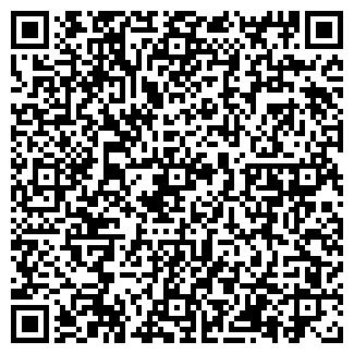 QR-код с контактной информацией организации ИП ТОПЛЕНИН С.В.