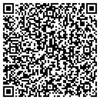 QR-код с контактной информацией организации СВЕТЛЫЙ ПУТЬ СПК