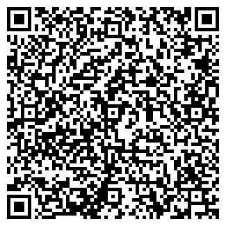 QR-код с контактной информацией организации ТИШИН-ЦЕМЕНТ