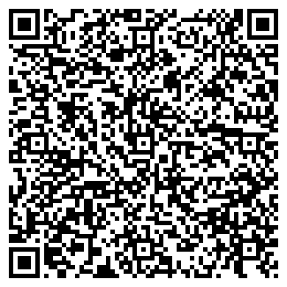 QR-код с контактной информацией организации РИМИ АВТО ООО