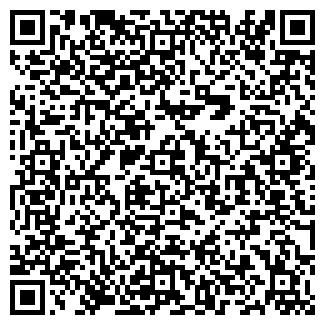 QR-код с контактной информацией организации СТЕЛС ПЛЮС ООО