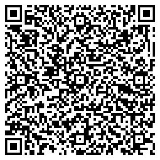 QR-код с контактной информацией организации БИОНИКА ДОПОЛНИТЕЛЬНОГО ОБРАЗОВАНИЯ ДЕТЕЙ ОБЛАСТНОЙ ЦЕНТР