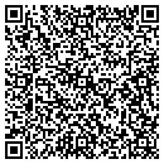 QR-код с контактной информацией организации ГУДОЧНИКОВА ЧП