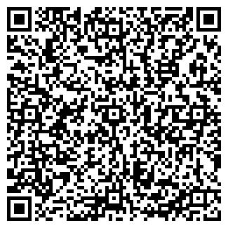 QR-код с контактной информацией организации ДИЛЕНД ООО
