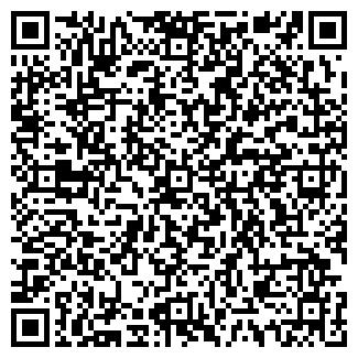 QR-код с контактной информацией организации НОВЫЙ Р. И. М. ООО