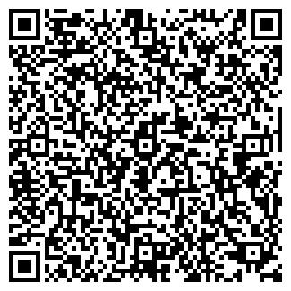 QR-код с контактной информацией организации ЧП ПЕТРОВИЧЕВ А. В.