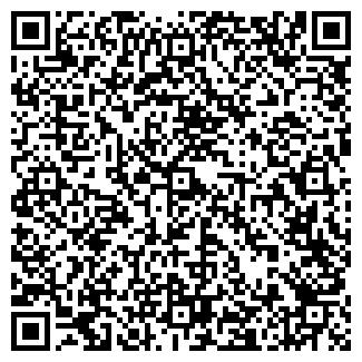 QR-код с контактной информацией организации АЛОЯН Т.К., ИП