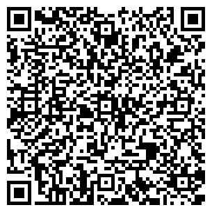QR-код с контактной информацией организации ТОО БОРКИ
