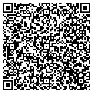 QR-код с контактной информацией организации ТЕОРЕМА ТК