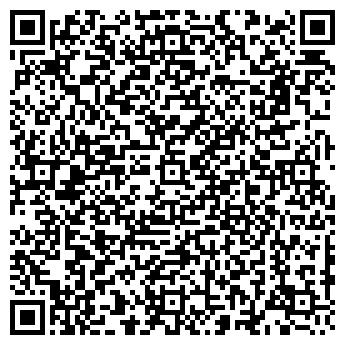 QR-код с контактной информацией организации НИКОЛЬ У СВЕТЛАНЫ
