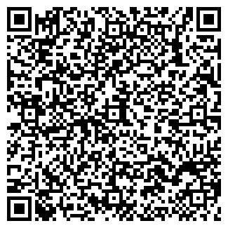 QR-код с контактной информацией организации ИП РАЗИНА Е.В.