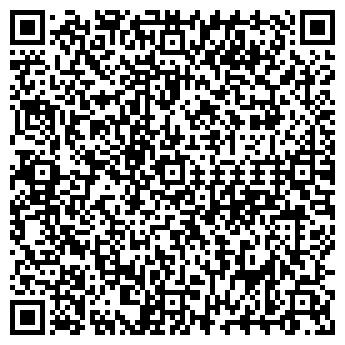 QR-код с контактной информацией организации МОЛНИЯ МОУ ДОД