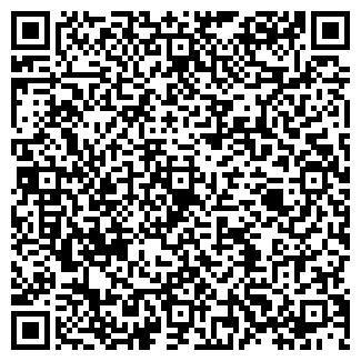 QR-код с контактной информацией организации ООО ШАЙБА