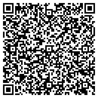 QR-код с контактной информацией организации WEBMONEY