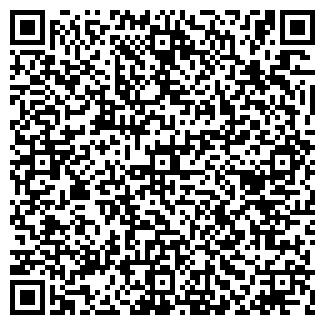 QR-код с контактной информацией организации ДРУЖИНА