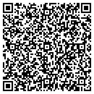 QR-код с контактной информацией организации ЮРЧИН, ИП
