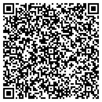 QR-код с контактной информацией организации № 13 ДЕТСКАЯ