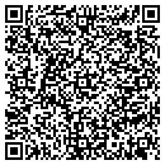 QR-код с контактной информацией организации ЗВЕЗДНАЯ