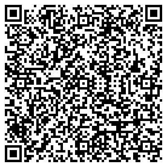 QR-код с контактной информацией организации ALEX & NATTY СТУДИЯ